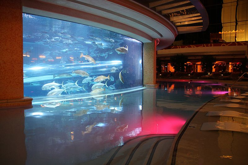 Shark slide inside the Golden Nugget Las Vegas located in Scorpio with Gemini photo: Heiko Tobien, ccbysa4.0