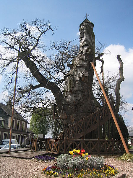 Le Chêne Chapelle – The Chapel Oak in astrogeography