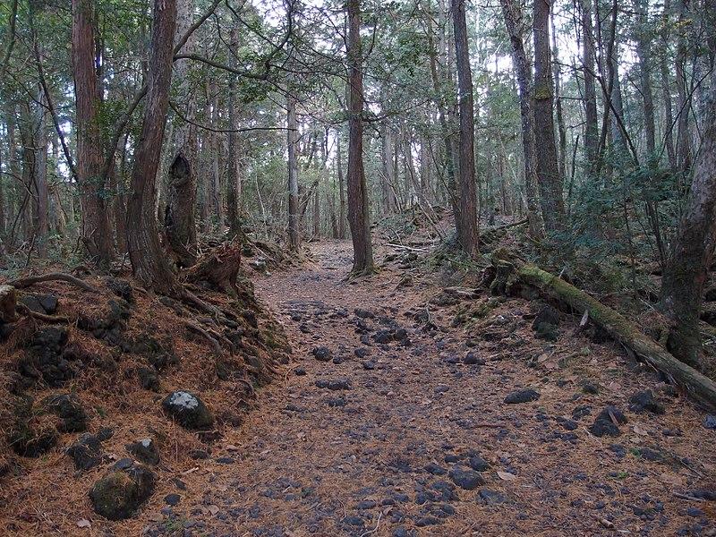 Japan, Aokigara, Mount Fuji in Astrologie und Astrogeographie