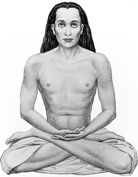 Cancer with Scorpio: the birth place of Mahavatar Babaji