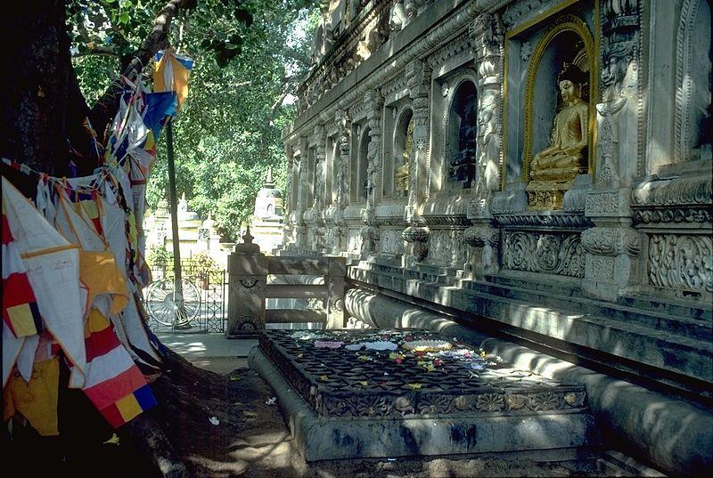 Fische und Fische – Der Tempel von Buddha`s Erleuchtung